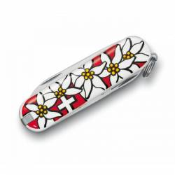 Victorinox Couteau Suisse Edelweiss